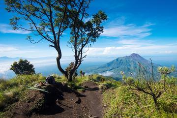 ムラピ山の斜面をハイキングするジョグジャカルタ初の日帰り旅行