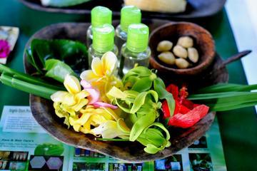Excursão de meio dia de medicina tradicional de Bali, incluindo aula...
