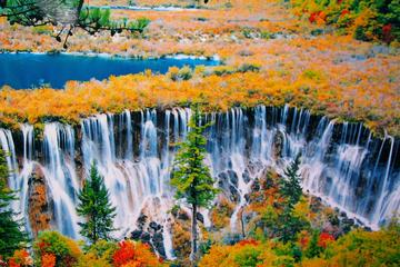 Private 5-Day Amazing Tour: Chengdu and Jiuzhaigou Tour Combo Package