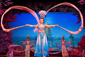 Private Xi'an Night Tour Including Tang Dynasty Music and Dance Show & Dumpling Banquet