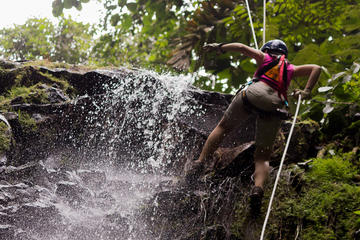 Sky Adventures Arenal Park Tour Including Ziplines, Canyoning and Rappelling