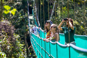 Sky Adventure Park Walk Tour - Monteverde