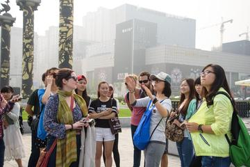 3-Hour Small Group Xi'an City Afternoon Walking Tour of Chang'an Scholar Road