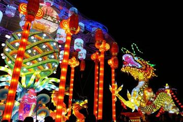 Lunar New Year Celebration: Private Tour of Chinese Lantern Festival...