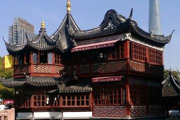 Shanghai Half-Day Private Tour: Yuyuan Garden and Xintiandi