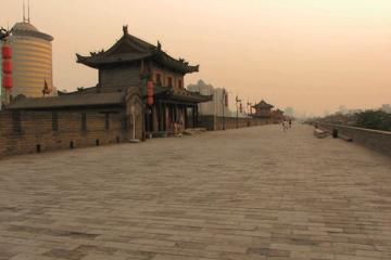 Xi'an Classic Day Tour: Shaanxi History Museum, Big Wild Goose...