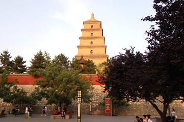 Xi'an Layover: City Wall and Big Wild Goose Pagoda With Airport Transfer