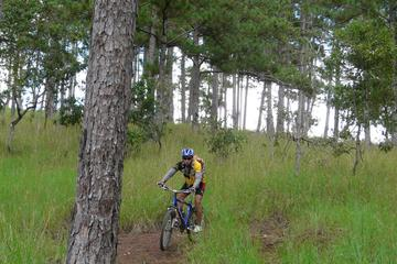 Crazy 8 Mountain Bike Tour from Dalat
