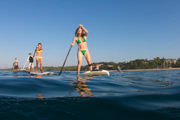 Stand Up Paddleboard Sightseeing Tour