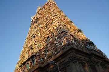 Private Chennai Tour: San Thome Church, Kapaleeshwar Temple, Marina...