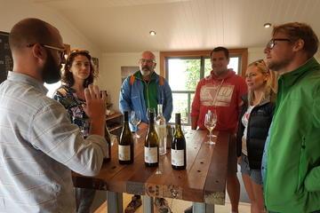 Cruise Excursion Marlborough Wine Tour