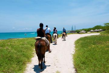 Excursión a caballo y buceo de superficie en Aruba