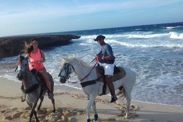 Aruba Private Horseback-Riding Beach...
