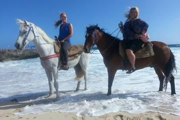 Aruba Small-Group Horseback-Riding Beach Tour