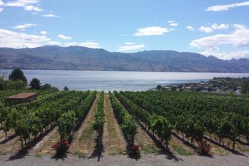 Day Trip All Star Wineries of Kelowna Tour near Kelowna, Canada