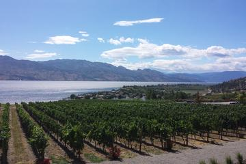 Day Trip Tour and Taste Okanagan's Wine Country near Kelowna, Canada
