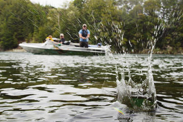 The 10 best outdoor activities in te anau tripadvisor for Half day fishing trips