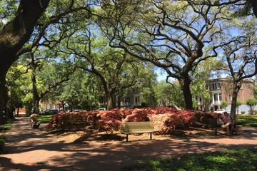 Book Stroll with a Local through Savannah's Historic District on Viator