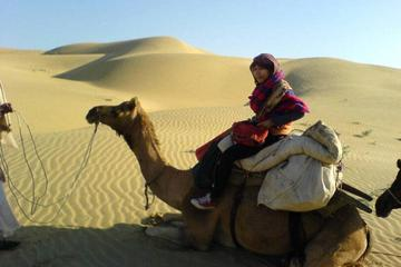 Full-Day Small-Group Camel Safari In Jaisalmer