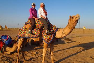 Private Tour :Bishnoi Village SafarI And Camel Safari