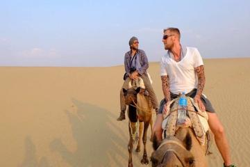 Private Tour :  Jaisalmer City Tour and Camel Safari