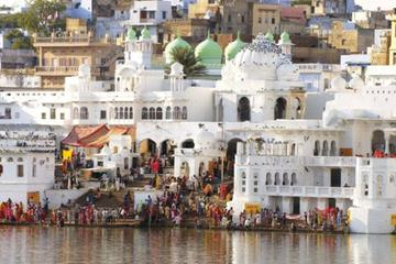 Private Transfer From Delhi To Pushkar