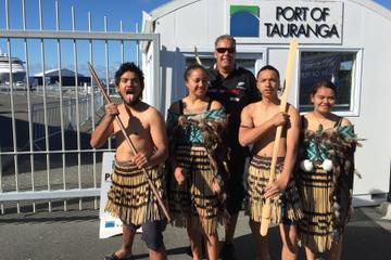 Rotorua Full Day Tour Including Maori...