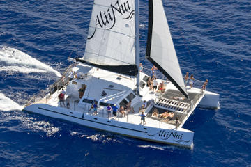 Luxury Turtle Point Morning Snorkel Sail