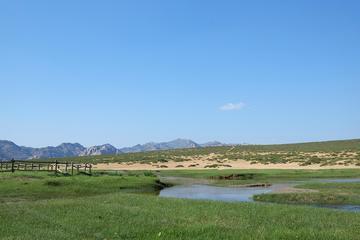7-Night Kharkhorum, Tsenkher Hot Spring and Khustai National Park Tour