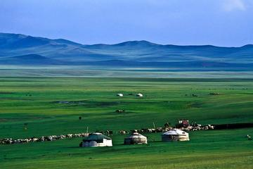 Ulaanbaatar Dugana Khad resort Horseback riding 2day