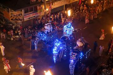 2-Day Private Kandy Esala Perahera Festival Tour