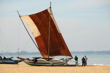Excursion d'une journée escapade dans le lagon de Negombo