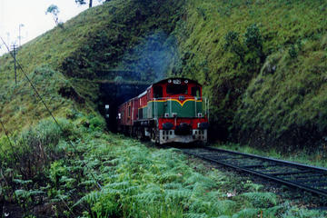 Excursion en train de 4 jours : la campagne du Sri Lanka