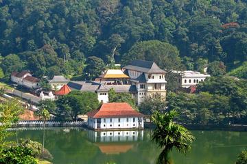 Excursion privée d'une journée le dernier royaume à Kandy