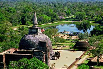 Private Tour to Sigiriya Rock Fortress and Polonnaruwa Ancient City ...