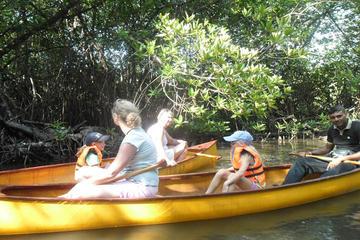 Excursion en canoë sur le lagon à...