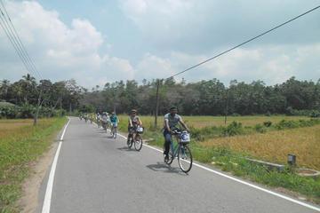 Excursion à vélo d'une demi-journée à...
