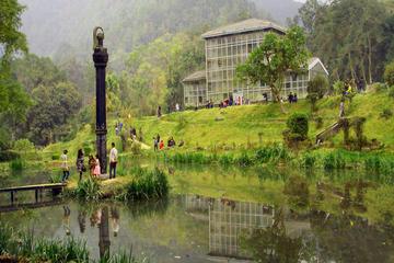 ゴダヴァリ植物園のプライベートツアー(ランチ付…