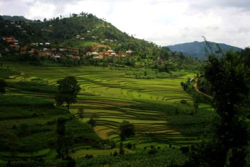 2-Day Balthali Village Tour from Kathmandu