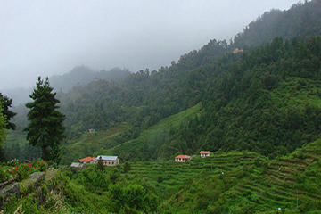 Private Daman Village Day Trip from...