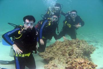 Cham Island Full Day Trip with Scuba Diving