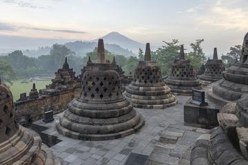 Early Morning Borobudur and Candi Rejo Trekking Tour from Yogyakarta