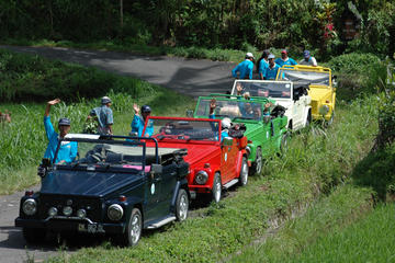 Full-Day Bali Contrasts Tour by Classic VW