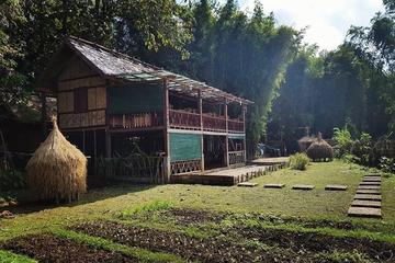 Full-Day Bamboo Experience from Luang Prabang
