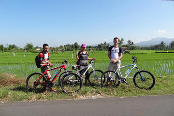 Full Day Gili Sudak and Cycling Tour
