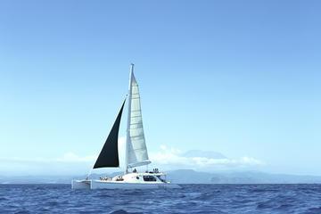 Full Day Sailing with Waka