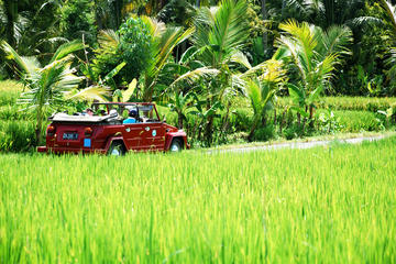 Full Day West Bali Discovery by VW