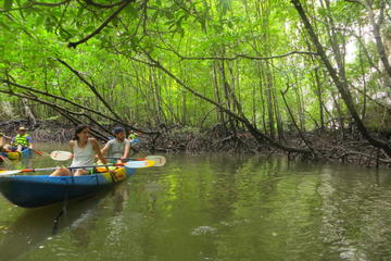 Half-Day Krabi Ao Tha Lane Nature Reserve by Kayak Including Lunch
