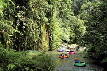 Half-Day River Tubing on the Penet River