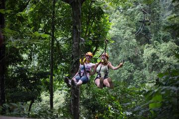 Jungle Zip Lining Adventure from Chiang Mai